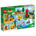 10907 LEGO® DUPLO® World Animals